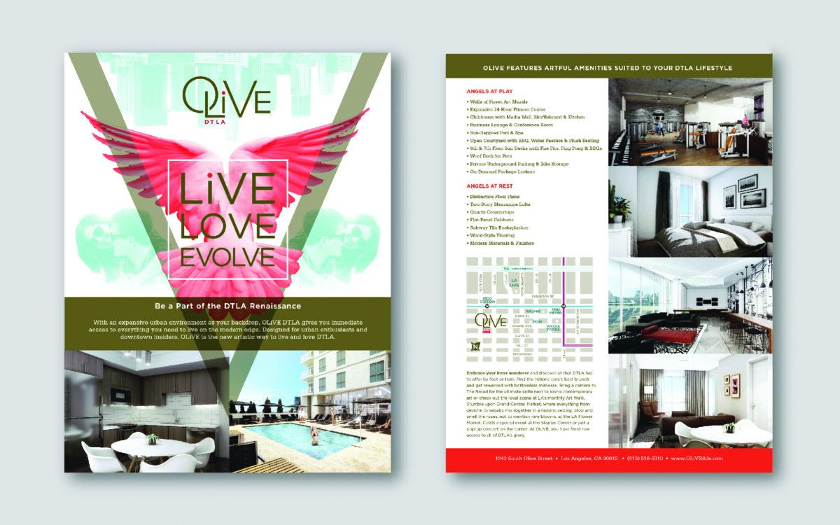 Olive DM